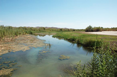 An intermittent stream:  Gila river, Arizona.