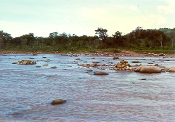 The Pirai river,  Santa Cruz, Bolivia